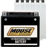 AGM batteri YTX14-BS
